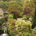 An Autumn Garden  by Rob Hawkins