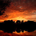 An Awesome Sunset  by J R Seymour