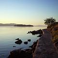 An Early Walk by Maja Smid