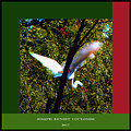 An Egret Sanctuary by Joseph Coulombe