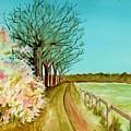 An English Footpath by Brenda Owen