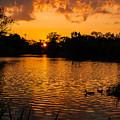 An Orange Pond. by Jose Sandoval