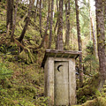 An Outhouse In A Moss Covered Forest by Michael Melford
