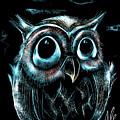 An Owl Friend by Alessandro Della Pietra