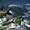 Anaglyph Whales by Ramon Martinez