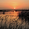 Anahuac Nation Wildlife Refuge Sunset by Lindy Pollard