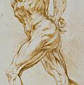 Anatomical Study by Rubens