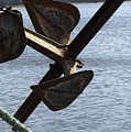 Anchor by Sara Stevenson
