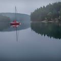 Anchored At Horton Bay by Jacqui Boonstra