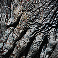 Ancient Hands by Skip Nall