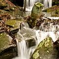 Ancient Stream by Douglas Barnett