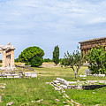 Ancient Temple At Famous Paestum Archaeological, Italy by JR Photography