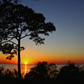 Anclote Gulf Sunset by Barbara Bowen