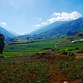 Andes  by Galeria Trompiz