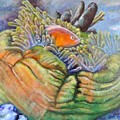 Anemone Coral And Fish by Jodi Higgins