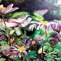 Anemones Japonaises by Muriel Dolemieux