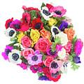 Bouquet Of Anemones by Anastasy Yarmolovich