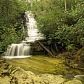 Angel Falls by Barbara Bowen