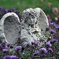 Angel by Gwen Allen