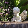 Angel by Heidi Poulin