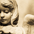 Angel Holding Clam Shell by Diane Payne
