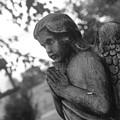 Angel by Krysti Willson