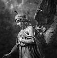 Angel by Marc Huebner