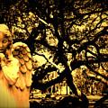 Angel Oak by Melissa Wyatt
