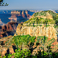 Angel Viewpoint North Rim Grand Canyon by Bob and Nadine Johnston