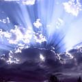 Angel Wings by Diane C Nicholson