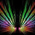 Angel Wings by Scott  Bricker