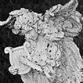 Angel With Harp by George Elliott