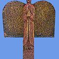 Angel019 by John Warren OAKES