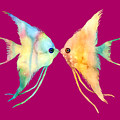 Angelfish Kissing by Hailey E Herrera