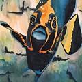 Angelfish by Rayning Art