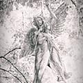 Angelic  by Jessica Jenney