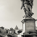 Angels From Rome by Andrea Mazzocchetti