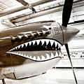 Anger Management Bw Palm Springs Air Museum by William Dey