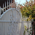 Angled Closeup Of White Washed Iron Gate To Garden by Colleen Cornelius