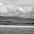 Anglesey Farmland And Distant Hills North Wales Uk by Joe Fox