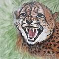 Blaa Kattproduksjoner       Angry Baby Cheetah by Sigrid Tune