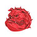 Angry Bulldog Head Drawing by Aloysius Patrimonio