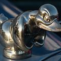 Angry Duck by Teresa Wilson