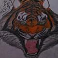 Angry Tiger by Abdelrhman Abolmgd