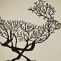Animal Drawing by Akash Budhaulia