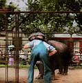 Animal - Hippo - Stupid Human Tricks 1910 by Mike Savad