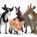 Animals Figurines by Bernard Jaubert