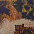 Animals -039 by Will Logan