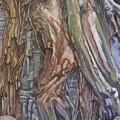 Ankor Temple Trees  by Jodi Higgins