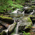 Anna Ruby Falls by Spencer Studios